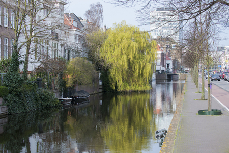 weeping willow: Town Canal Mauritskade in the Hague, Den Haag, the Netherlands with a Weeping Willow on the quayside Stock Photo