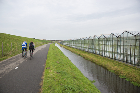 cycler: Two Cyclers on a Cycle Path alongside a Greenhouse in Westland, the Netherlands