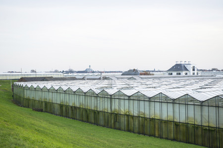 westland: Greenhouses and a Church in the background in het Westland, the Netherlands Stock Photo