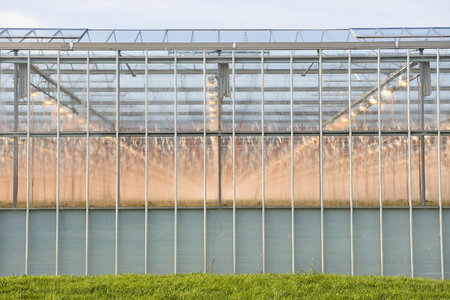 westland: Frontage of a Greenhouse in the Westland, the Netherlands