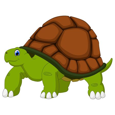 Cute turtle cartoon with white background  イラスト・ベクター素材