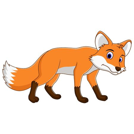 illustration of Cute fox cartoon isolated on white background