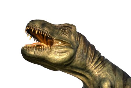 A isolated T-rex head