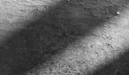 old leather texture mono tone             Stock Photo