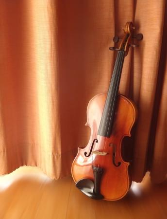 still life antique violin