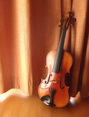 still life antique violin                 photo
