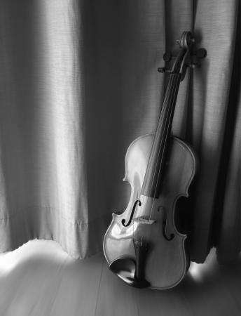 still life monochrome antique violin