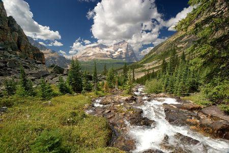A mountain creek runs down to lake O'Hara. Yoho National Park, BC, Canada