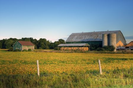 farm structures: Crop field with farm structures on a background highlighted by a sunset