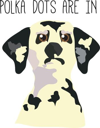 interesting: This sweet dalmation pup creates an interesting design with it\