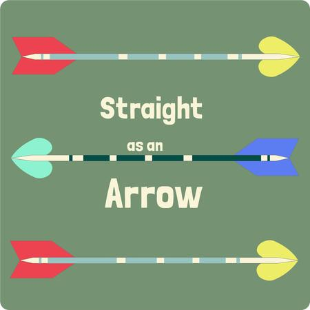 projectile: Colorful and unique arrows come together creating a fitting design for the archer or bow hunter.  Decorate a bow case or create some throw pillows for the man cave. Illustration