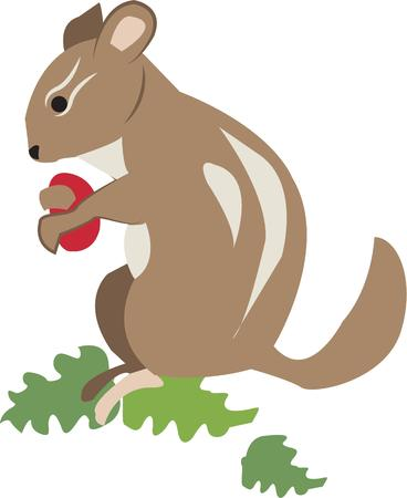 cuteness: This cute little chipmunk is just what you are looking for when you need a touch of cuteness.  We love this little animal especially on kids gear.