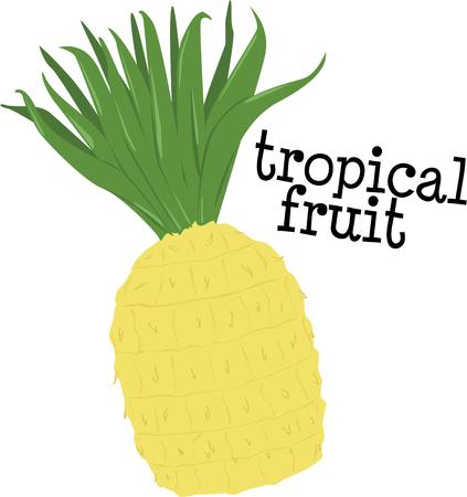flair: Add some flair to your meals and snacks with fresh pineapple.   Illustration