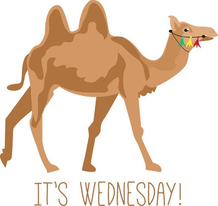 hump: A two hump camel is a classic symbol of North Africa.  This funny looking creature is just what you need to create a fun piece of apparel or a travel bag.