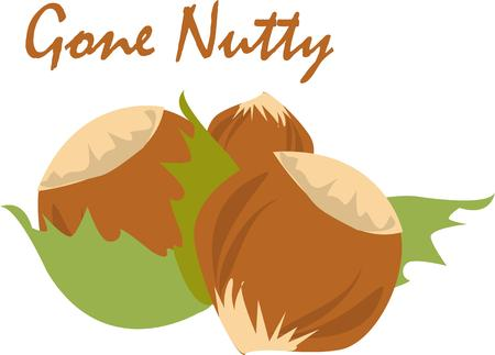 brazil nut: Add this hazelnut to kitchen dcor.  This simple design adds a unique flair. Illustration