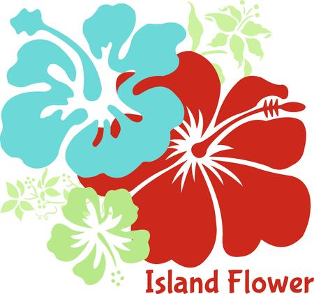 flair: Colorful Hawaiian hibiscus are always an excellent choice for adding a floral accent.  Great tropical flair too Illustration
