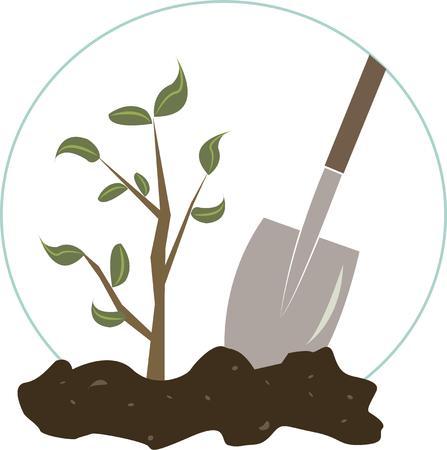 baum pflanzen: F�rdern und Natur zu feiern mit diesem Baumpflanzung Design. Perfekt f�r Arbor Day. Illustration