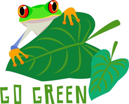 closely: Look closely behind this big leaf and catch a glimpse of a our big eyed frog  Bring him along onto your projects to encourage a green lifestyle.