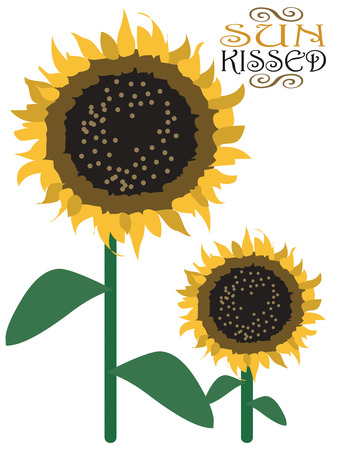 aster: There is simply no other flower quite as striking as sunflowers.  We find this elegant bloom adds unique character to tote bags and green grocery bags.