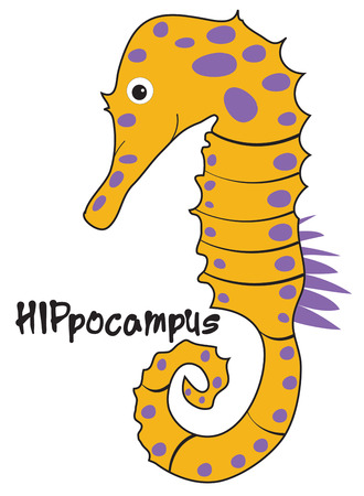 beachwear: A seahorse with big blue spots adds a whimsical feel to your artistic endeavors.  Add him to kids beachwear for a super fun look Illustration