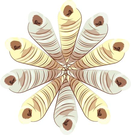 ordinary: Long spiral shells come together in a unique pattern creating a most beautiful wreath. This not so ordinary creation is sure to be a pleasing addition to wherever you use it. Illustration