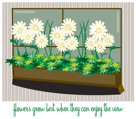 planter: Flowers growing in a window planter guarantee a stunning view.   Illustration