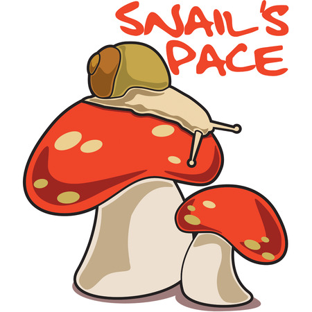companions: Our slow snail sits atop a brightly adorned mushroom.  These snail and toadstool companions are so very pretty on any apparel or bag creation.
