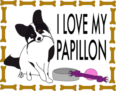 pure bred: The Papillon also called the Continental Toy Spaniel is a breed of dog of the Spaniel type. Presented in a frame of dog bones creating the perfect design for the dog lover.