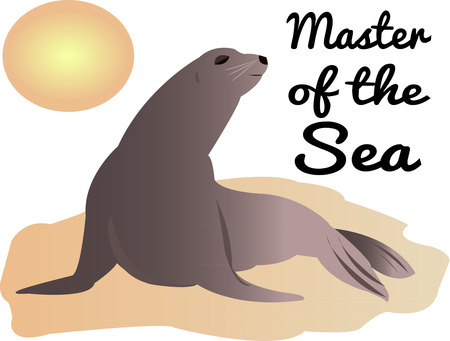 plight: Create a something special to draw attention to the plight of the sea lions.  These beautiful creatures are definitely the masters of the sea.