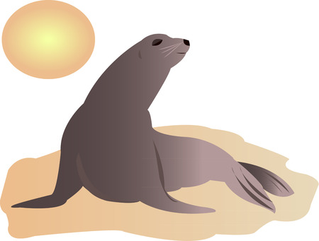 marine scene: Create a something special to draw attention to the plight of the sea lions.  These beautiful creatures are definitely the masters of the sea.