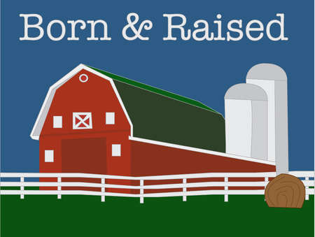 bála: Farm Livin 'az élet és a legjobb egy nagy piros pajta Ez vidéki színhely egy tökéletes design mindent paplant, hogy 4H projektek.