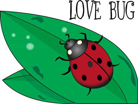 ladybeetle: Look closely and you will find a cute little lady bug on this leaf.  Add this cute guy to a shirt to celebrate the beauty of nature.