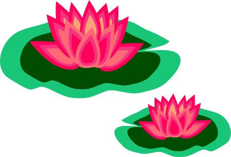 lily pad: Lily pads add their exotic beauty to ponds and lakes.  Consider these floral beauties for your shirts and bags.