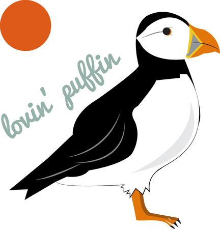 seabird: We are lovin this puffin  This lovely bird of Alaska is a great way to add charm and character to throw pillows or shirts. Illustration