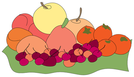 dcor: Summers bounty is a delicious harvest of fruits and veggies.  Always in good taste for kitchen dcor. Illustration