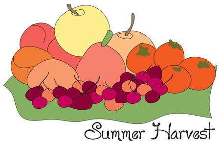 nectarine: Summers bounty is a delicious harvest of fruits and veggies.  Always in good taste for kitchen dcor. Illustration