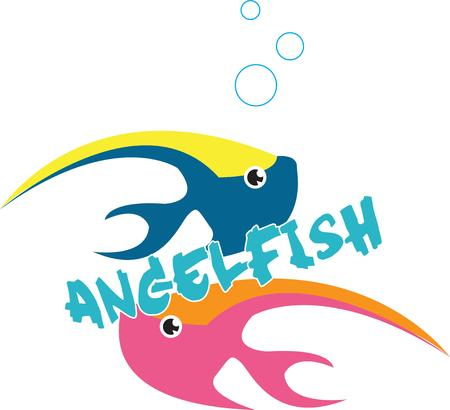 angel fish: Colorful angel fish swim by making a striking impression wherever they go.  Love these guys on baby gear.