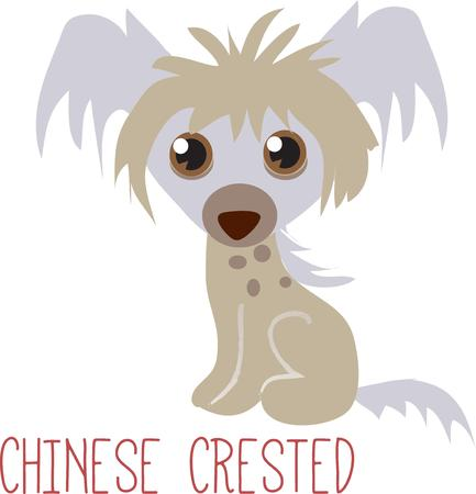 pooch: This sweet little pooch with its big sweet eyes makes a heartmelting embellishment for shirts and bags.  Add to a tee shirt to create an instant favorite. Illustration