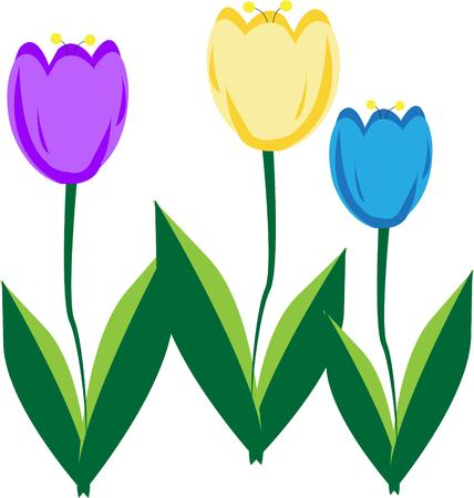 finest: Theres nothing like a springtime full of flowers and new greenery.  These tulips are the seasons finest.  Lovely as a part of your springtime creations