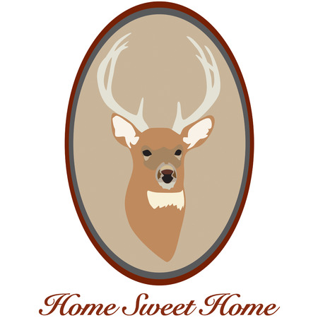 whitetail deer: Hunters prize