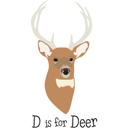 hunters: hunters prize