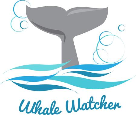 tail: The tail of the whale