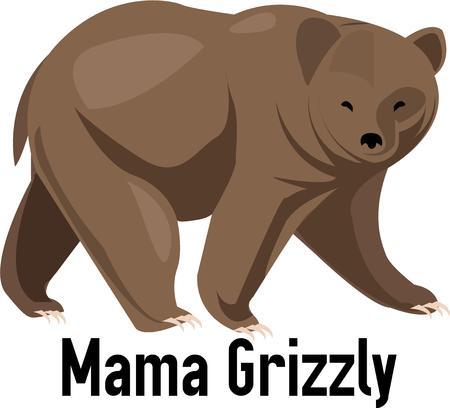 brown: Brown bear Illustration