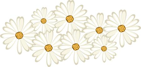 shasta daisy: Lovely little daisies create a colorful floral greeting.  Add the flair of beautifully simple daisies with this lovely design.