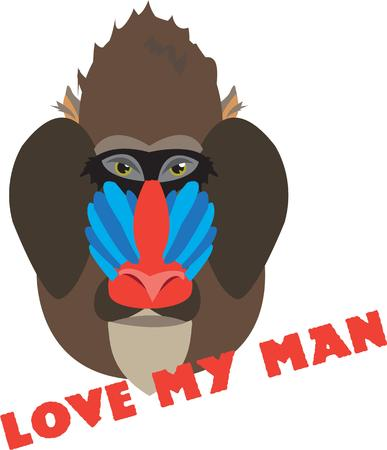 mandrill: Jungle baboon