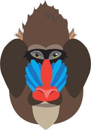 mandrill: Questo colorato primate � un'aggiunta insolita e inaspettata di un progetto giungla tema. La faccia colorata aiuta illuminare qualsiasi motivo animale.