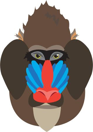mandrill: This colorful primate is an unusual and unexpected addition to a jungle theme project.  The colorful face helps brighten up any animal motif.