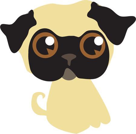 carlin: Pug dog