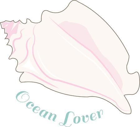 conch: Conch shell