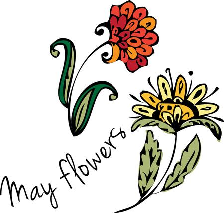 april showers: Sweet April showers bring May flowers These are lovely spring flowers for your spring creativity. Illustration